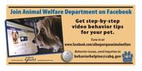 Join Animal Welfare Department on Facebook