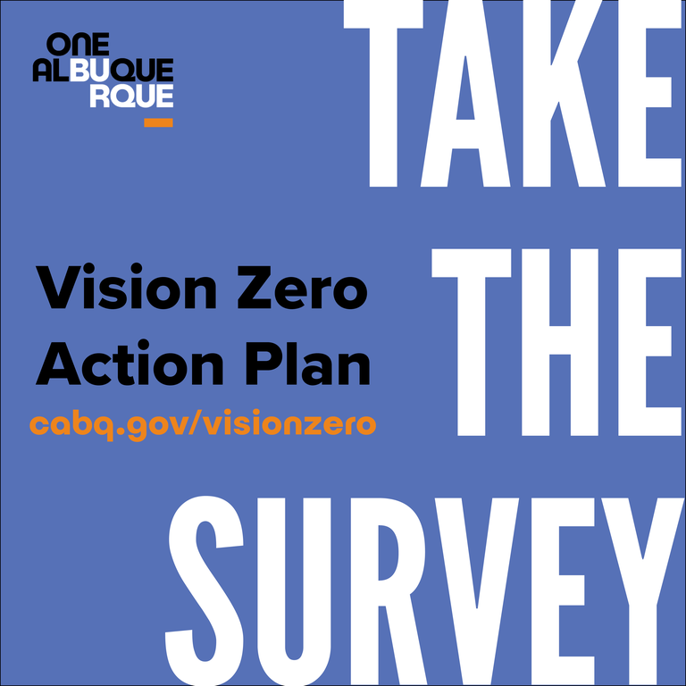 Vision Zero Fall 2020 Survey: English