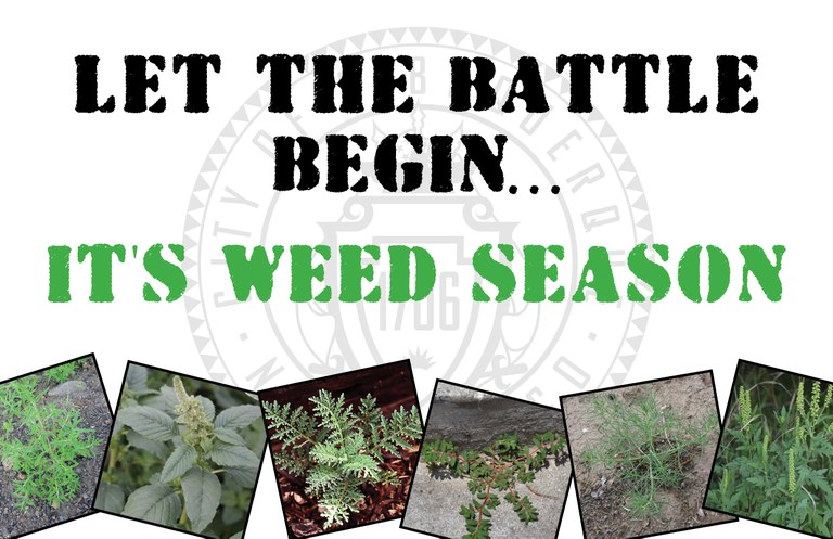 Weed Season Reminder Postcard
