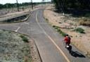 Bosque Bicyclist