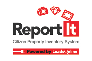 An image of the ReportIt logo.