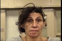 Property Crime Offender Arrested