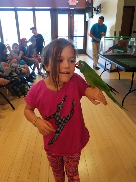 Image of Youth with Bird
