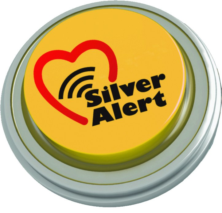 Silver Alert Button Icon