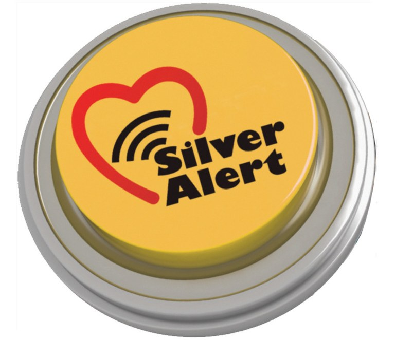 Silver Alert Button Icon