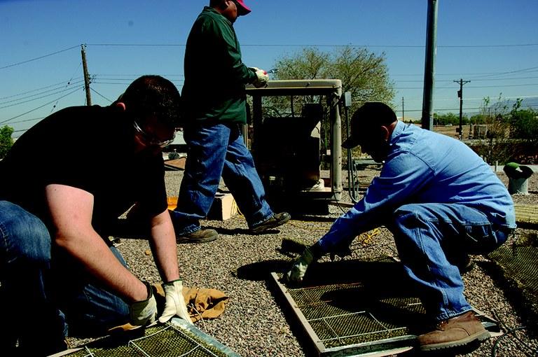 Yard work2.jpg