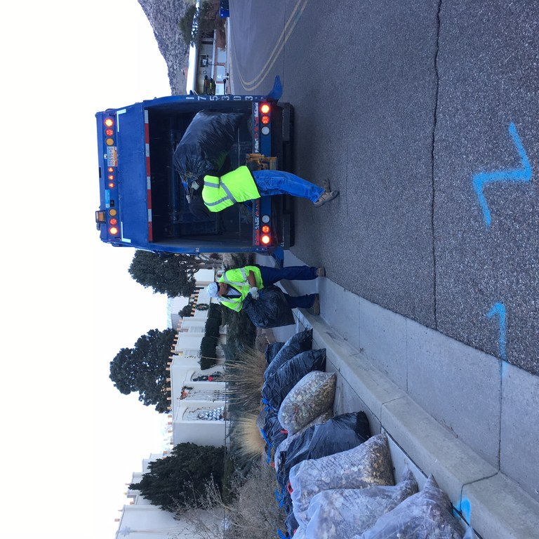Green Waste Collection_20181203.JPG