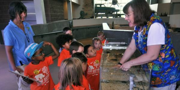 Children learning about fish at the aquarium.