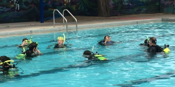 An image of children swimming in a pool.