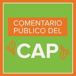 cap-public-comment-web-button-spanish.jpg