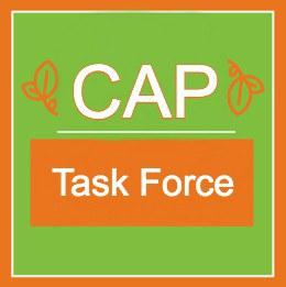 CAP TASK FORCE 4.jpg