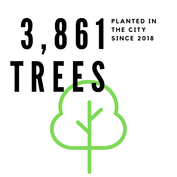 2,667 trees have been planted in the City since 2018.