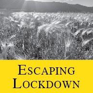 button_escaping lockdown