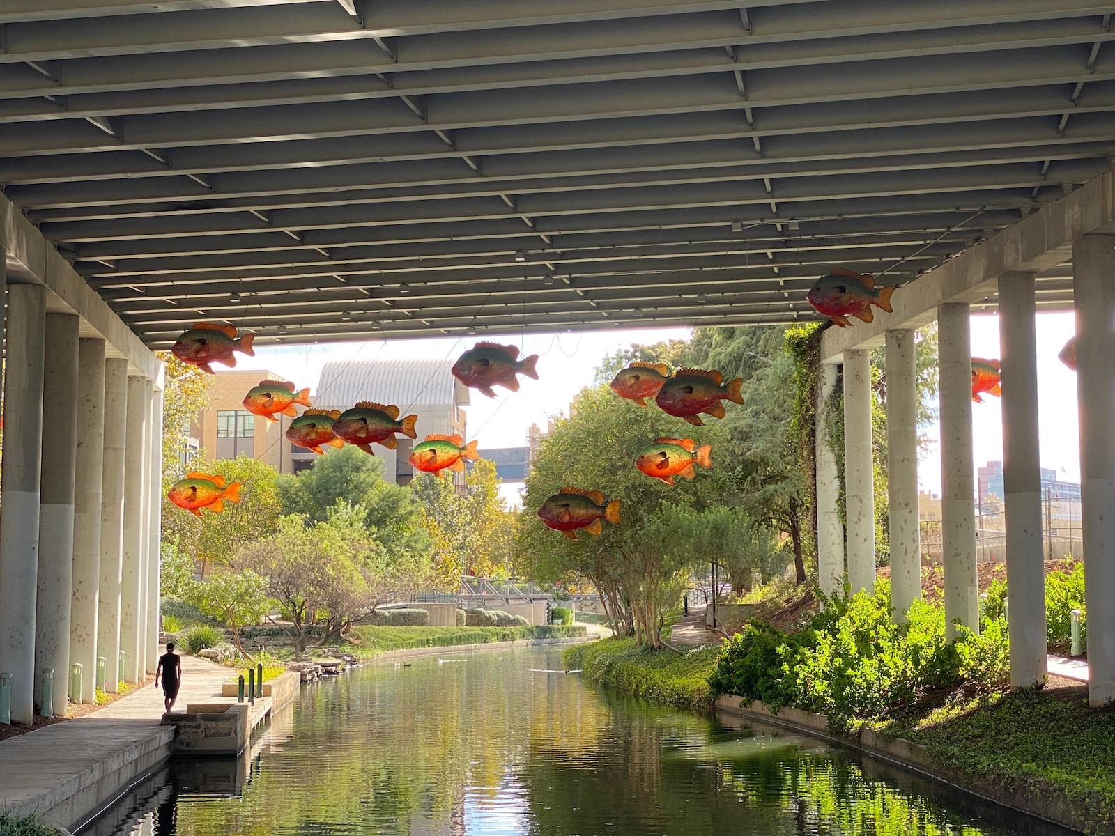 Angelica Vela, Flying Fish