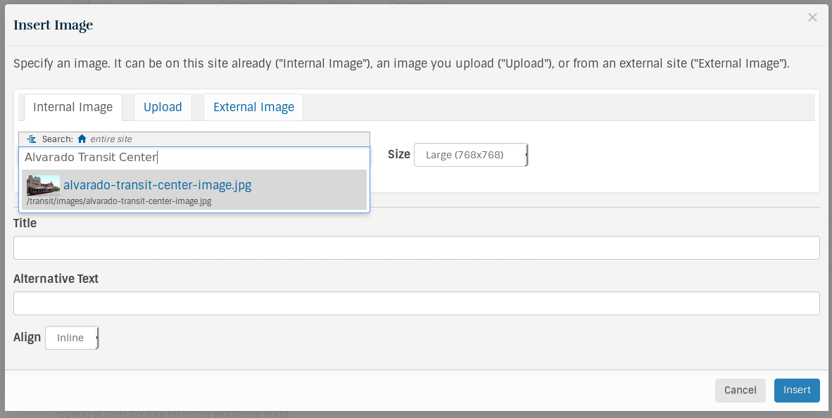 Screenshot of the dialog box which opens when adding an image to the body text.