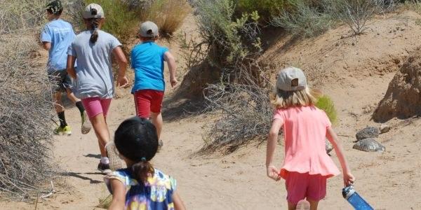 Children hiking on a trail via the Explorer Camp program.